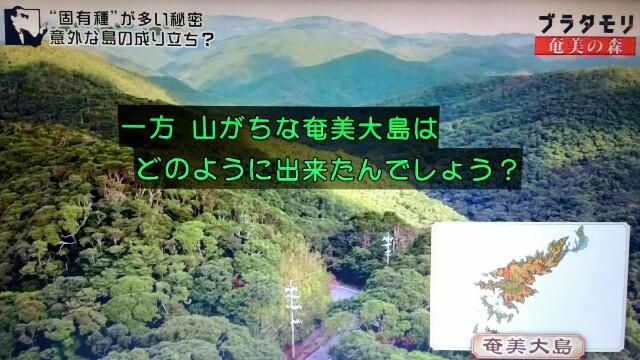 f:id:morifumikirikita319:20170326000839j:image