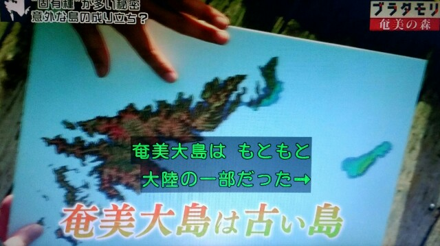 f:id:morifumikirikita319:20170326001318j:image