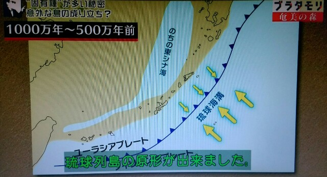 f:id:morifumikirikita319:20170326002011j:image