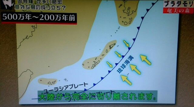 f:id:morifumikirikita319:20170326002101j:image