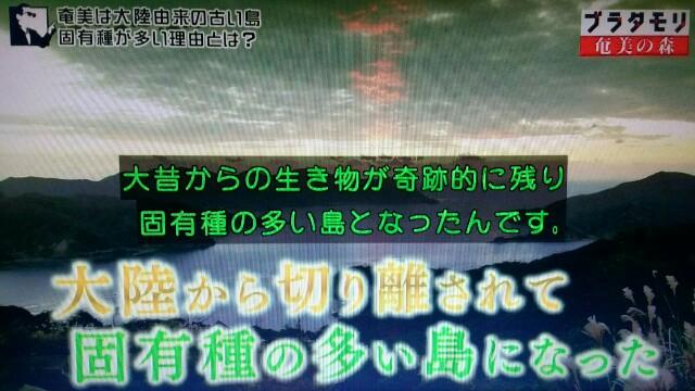 f:id:morifumikirikita319:20170326003104j:image