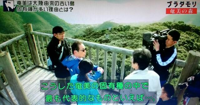 f:id:morifumikirikita319:20170326003128j:image