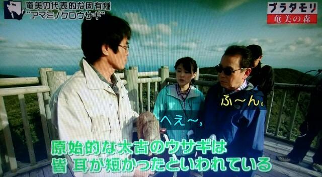 f:id:morifumikirikita319:20170326003217j:image