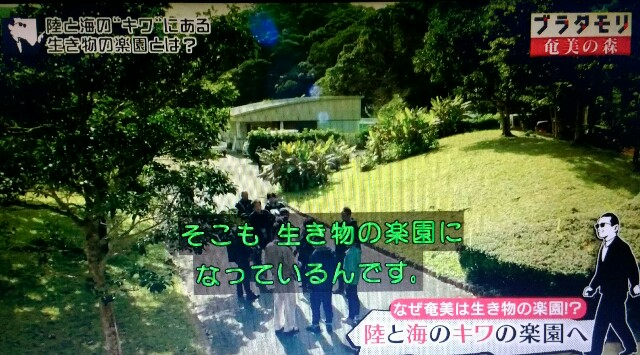 f:id:morifumikirikita319:20170326004243j:image
