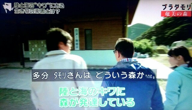 f:id:morifumikirikita319:20170326004254j:image