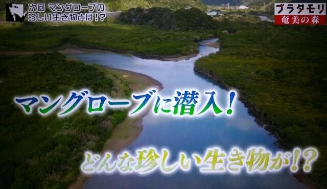 f:id:morifumikirikita319:20170326005133j:image