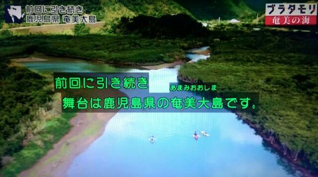 f:id:morifumikirikita319:20170401203954j:image