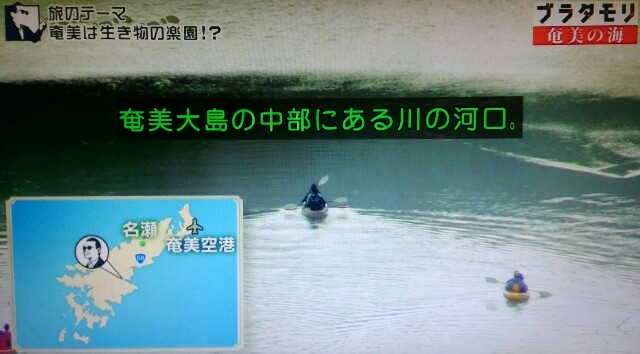 f:id:morifumikirikita319:20170401204016j:image