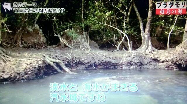f:id:morifumikirikita319:20170401204114j:image