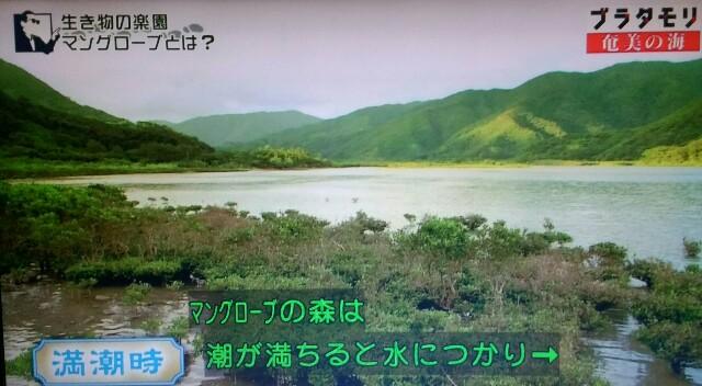 f:id:morifumikirikita319:20170401204158j:image