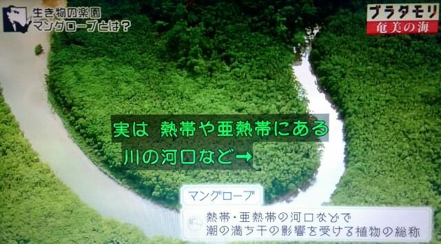 f:id:morifumikirikita319:20170401204236j:image