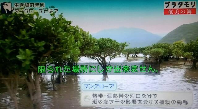 f:id:morifumikirikita319:20170401204250j:image