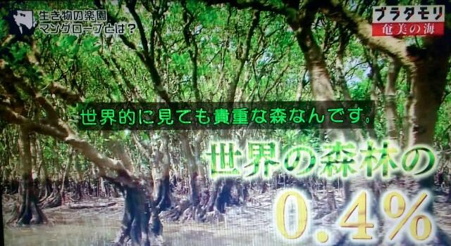 f:id:morifumikirikita319:20170401204300j:image