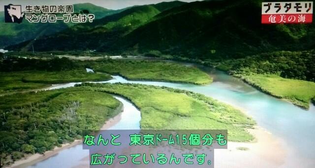 f:id:morifumikirikita319:20170401204318j:image