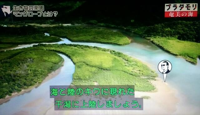 f:id:morifumikirikita319:20170401204328j:image