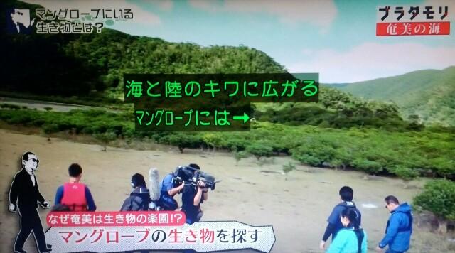 f:id:morifumikirikita319:20170401210001j:image
