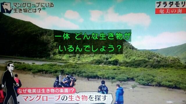 f:id:morifumikirikita319:20170401210016j:image