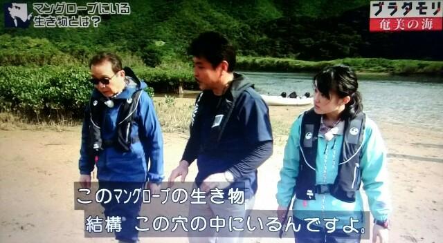 f:id:morifumikirikita319:20170401210031j:image
