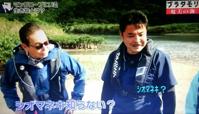 f:id:morifumikirikita319:20170401210112j:image