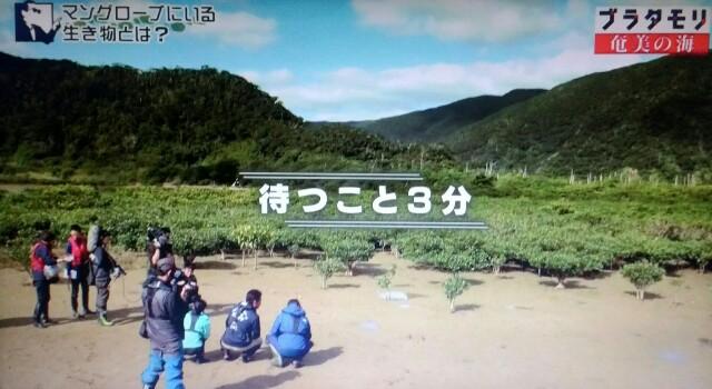 f:id:morifumikirikita319:20170401210203j:image
