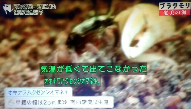 f:id:morifumikirikita319:20170401211608j:image