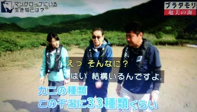 f:id:morifumikirikita319:20170401211636j:image