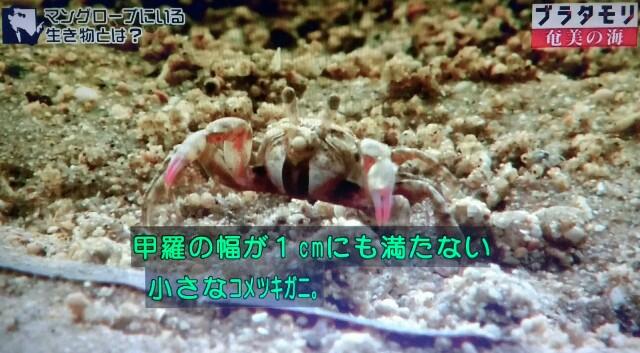 f:id:morifumikirikita319:20170401211726j:image