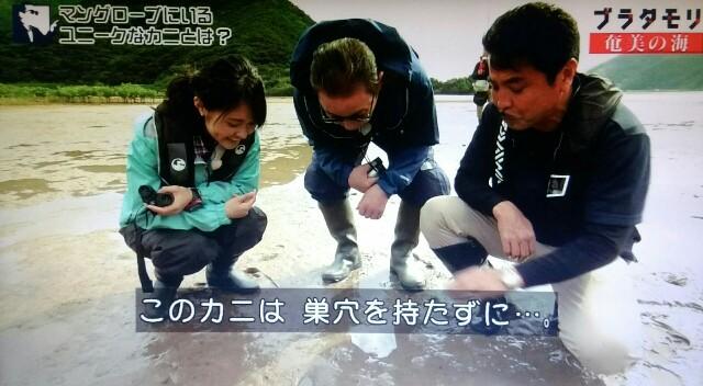 f:id:morifumikirikita319:20170401211857j:image