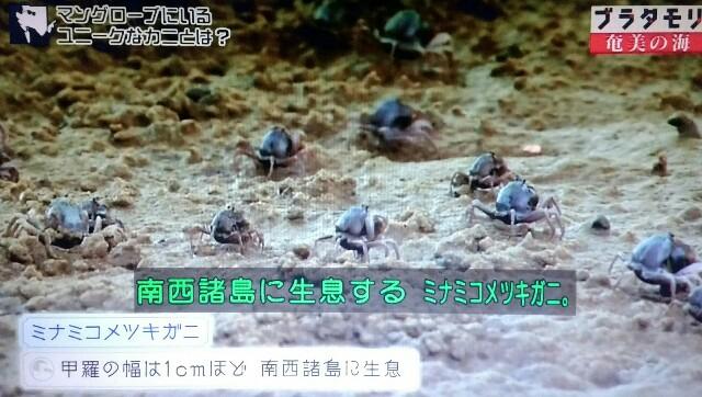 f:id:morifumikirikita319:20170401211909j:image