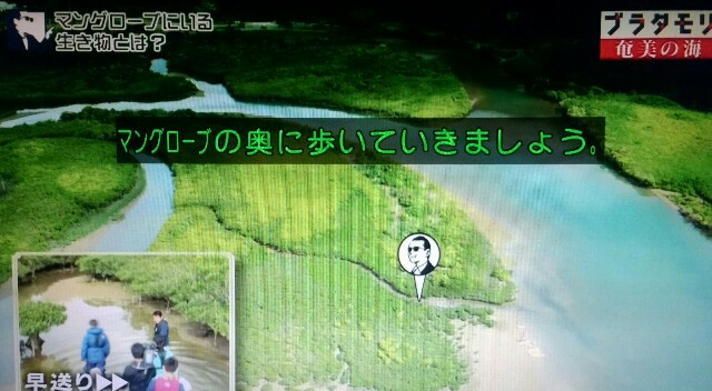 f:id:morifumikirikita319:20170401213508j:image
