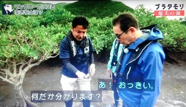 f:id:morifumikirikita319:20170401213526j:image