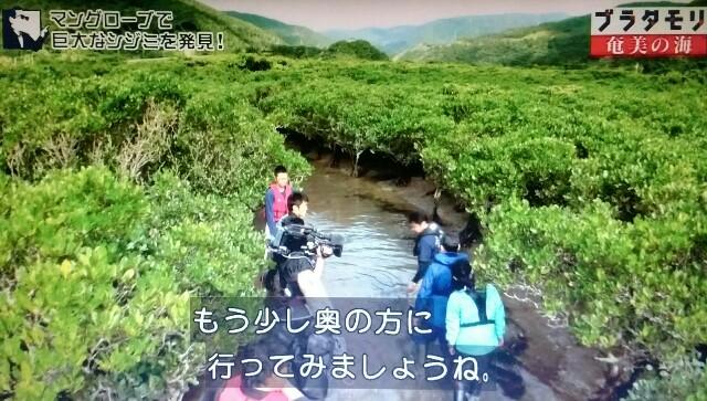 f:id:morifumikirikita319:20170401213640j:image