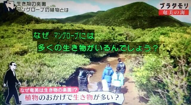 f:id:morifumikirikita319:20170401214638j:image