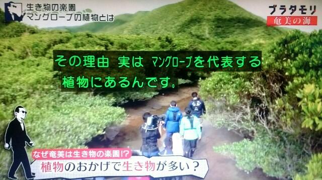 f:id:morifumikirikita319:20170401214655j:image