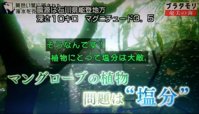 f:id:morifumikirikita319:20170401224115j:image