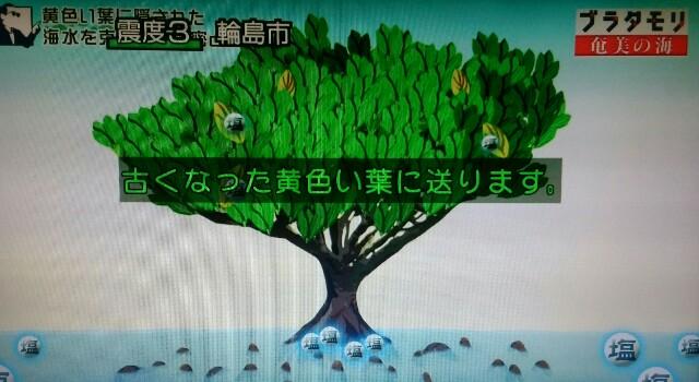 f:id:morifumikirikita319:20170401224558j:image