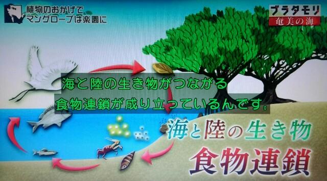 f:id:morifumikirikita319:20170401225436j:image