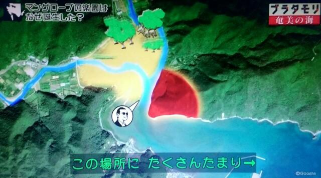 f:id:morifumikirikita319:20170401225608j:image