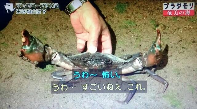 f:id:morifumikirikita319:20170401230242j:image