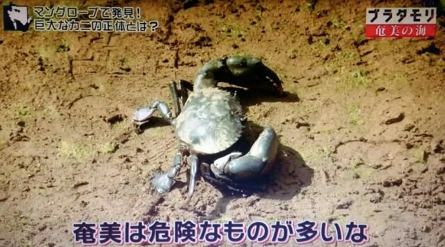 f:id:morifumikirikita319:20170401231258j:image