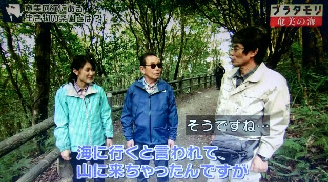 f:id:morifumikirikita319:20170401233344j:image
