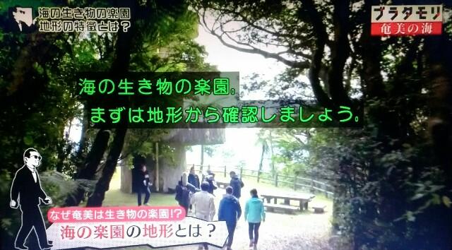 f:id:morifumikirikita319:20170401233544j:image