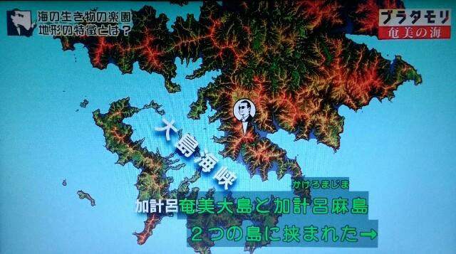 f:id:morifumikirikita319:20170401233707j:image