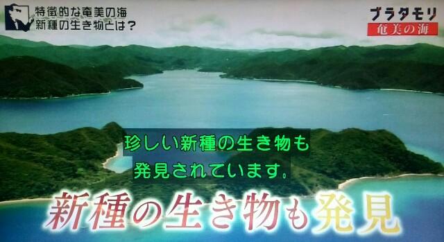 f:id:morifumikirikita319:20170401234655j:image