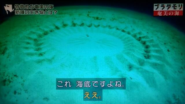 f:id:morifumikirikita319:20170402000020j:image