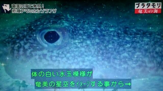 f:id:morifumikirikita319:20170402000109j:image