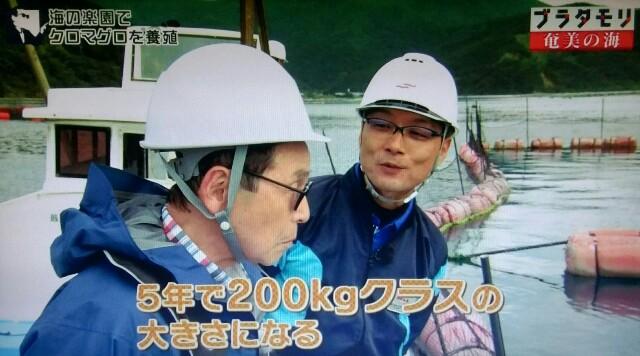 f:id:morifumikirikita319:20170402062438j:image