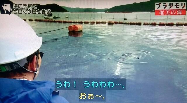 f:id:morifumikirikita319:20170402062453j:image