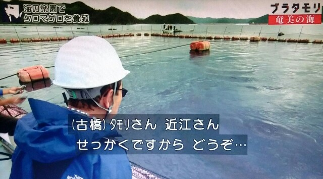 f:id:morifumikirikita319:20170402062513j:image