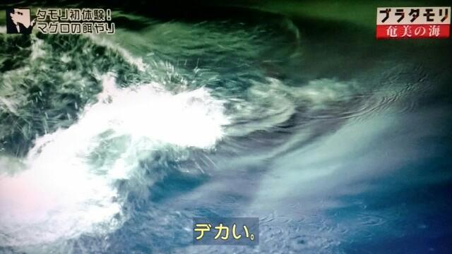 f:id:morifumikirikita319:20170402062540j:image